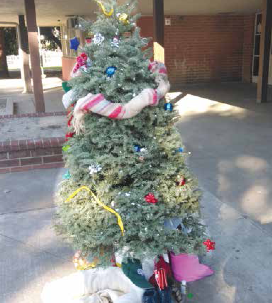 The Christmas tree was decked with gifts for all those who had no families.